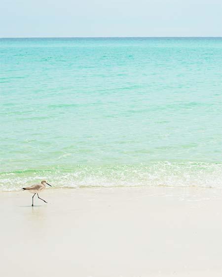 Beaches, Corporate Retreat
