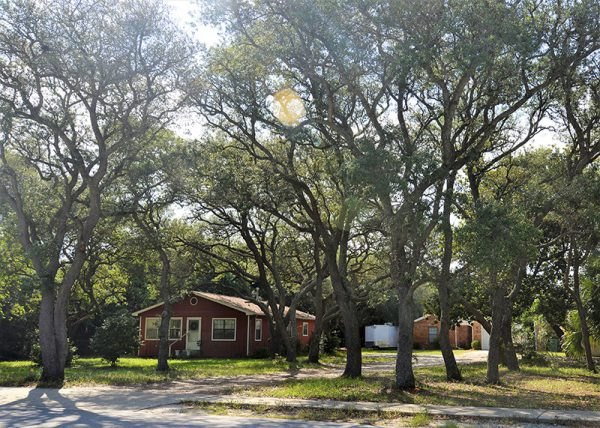 Learn More About How these Vacation Homes in Destin Began